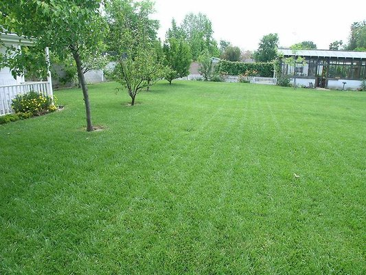 ewloc DSCN8420Move