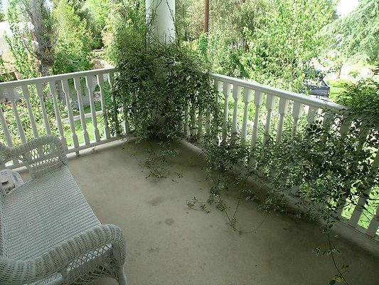 ewloc DSCN8389Move