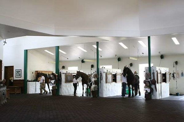 EWLOC stables-4